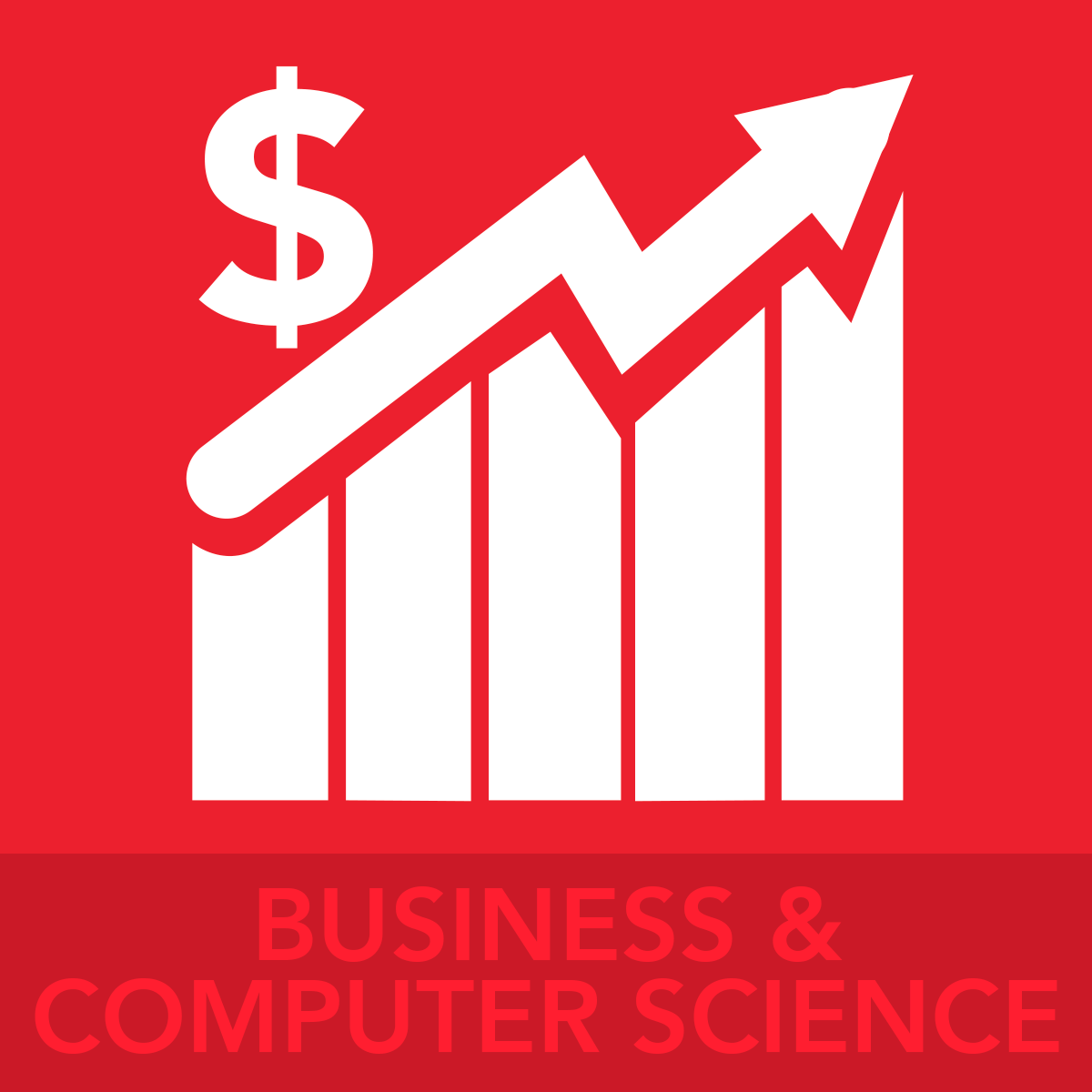 BUSINESS AND COMPUTER SCIENCE ICON BUTTON